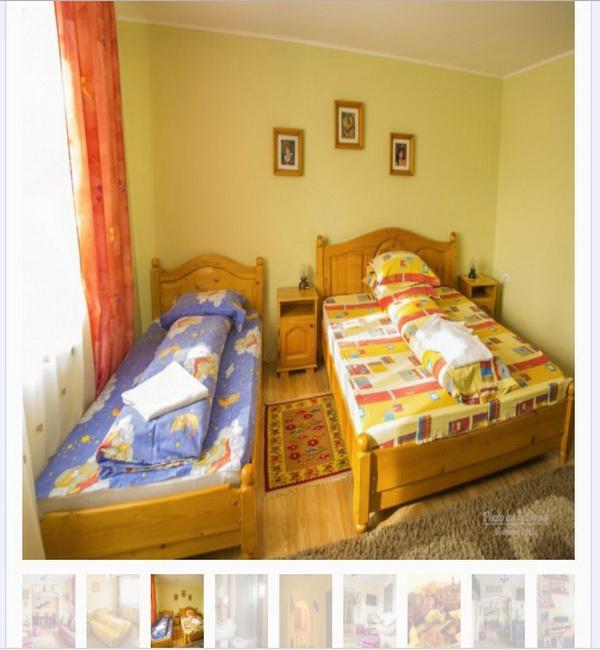 Online WEB ro - Model site prezentare realizat, site prezentare oferte hotel pensiune turistica Bucovina Foto 2