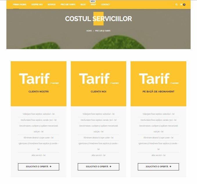 Online WEB ro - Model magazin online realizat, magazin vânzări servicii vidanjare curățare igienizare Foto 4