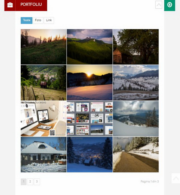 Online WEB ro - Model site prezentare realizat, site prezentare cv curriculum vitae personal Foto 3